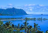 Heeia fishpond surrounded by green palm trees overlooking Chinaman's hat with the Koolau mountain range on Oahu's Windward coastline