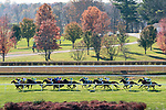 November 7, 2020 : Horses race during the Maker's Mark Filly & Mare Turf on Breeders' Cup Championship Saturday at Keeneland Race Course in Lexington, Kentucky on November 7, 2020. Scott Serio/Eclipse Sportswire/Breeders' Cup/CSM