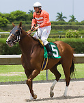10 July 2010: Square Deal and Jockey Elvis Trujillo after the Bob Umphrey Turf Sprint Handicap at Calder Race Course in Miami Gardens, FL.