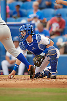 Dunedin Blue Jays catcher Danny Jansen (5) picks up a loose ball during a game against the St. Lucie Mets on April 20, 2017 at Florida Auto Exchange Stadium in Dunedin, Florida.  Dunedin defeated St. Lucie 6-4.  (Mike Janes/Four Seam Images)