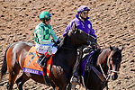November 1, 2019 : on Breeders' Cup Championship Friday at Santa Anita Park in Arcadia, California on November 1, 2019. /03371032//Eclipse Sportswire/Breeders' Cup/CSM