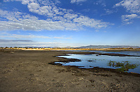 A general view of a lake in the national park of Las Tablas de Daimiel is pictured in Ciudad Real on November 16, 2009. The European Union launched an investigation into Spanish wetland that has turned bone dry through mismanagement of water resources  from areas where fish once swam. The EU wants the Spanish government to explain how it plans to save Las Tablas de Daimiel National Park.The park, one of Spain's few wetlands, is classified as a UNESCO biosphere site and an EU-protected area because of its birdlife. But it has been drying up for decades, largely because of wells dug by farmers on the edges of the park to tap an aquifer that feeds the wetland's lagoons. Many of the wells are illegal. Environmentalists call this case a particularly glaring example of how a natural resource can be abused. (c)Pedro ARMESTRE