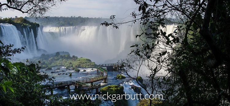 Early morning at Iguasu Falls (also Iguazu Falls, Iguazú Falls, Iguassu Falls or Iguaçu Falls) on the Iguasu River, Brazil / Argentina border. Photographed from the Brazilian side of the Falls. State of Paraná, Brasil.