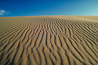 Kelso sand dunes with patterns stretching to horizon. Kelso California.