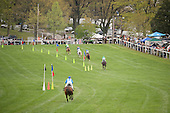 A panorama of the finish of the 2011 Temple Gwathmey. Decoy Daddy is on the lead and, after helping set the early pace, former champ Mixed Up is last.