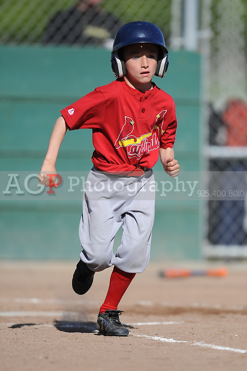 The Farm Cardinals of Pleasanton National Little League  March 28, 2009.