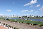 Gulfstream Park Race 1