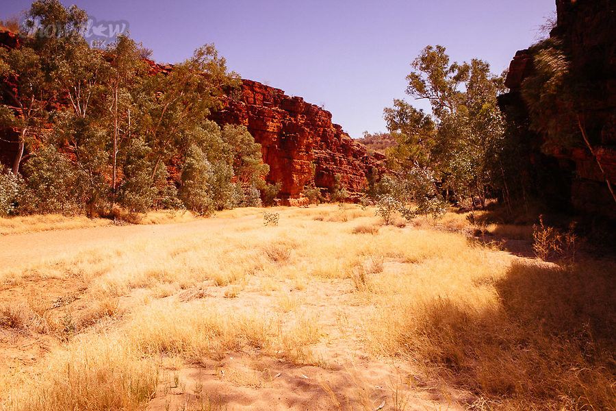 Image Ref: CA703<br /> Location: Trephina Gorge, Alice Springs<br /> Date of Shot: 15.09.18