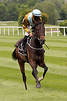 15th May 2020, Muenchen-Riem racecourse, Munich, Germany. Flat racing;  Pfingstrose with Sibylle Vogt up