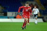 International Friendly match between Wales and Scotland at the new Cardiff City Stadium : Wales' Joe Allen.