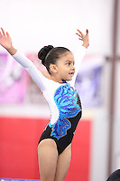2016 South Texas State Meet by Gym