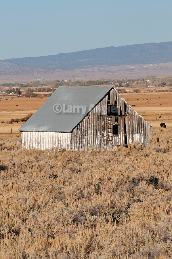 Weathered wooden barn in the Carson Valley