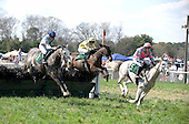 Junood wins Ford Conger steeplechase at Aiken Spring Races, 3/20/2010, for owner-trainer Dave Washer, and rider Bernie Dalton.