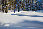 A cross country skier at Lolo Pass Recreation area. Skiing through open meadows in lolo national forest
