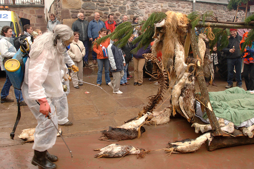 ZUBIETA, NAVARRE - JANUARY 31: Disguised people with a foat representing the 'Bird flu' sickness during the celebration of an ancient traditional carnival in Zubieta village on January 31, 2006. Photo by Ander Gillenea