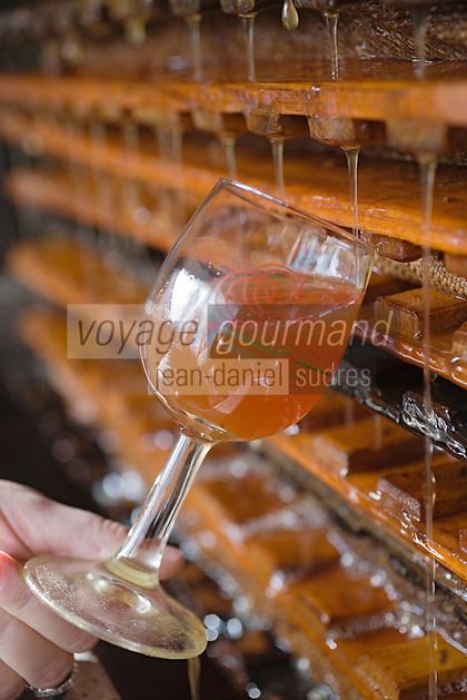 Europe/France/Normandie/Basse-Normandie/14/Calvados: Pays d'Auge/Saint-Aubin: Pressage du Cidre du Pays d'Auge chez Mr Senis producteur de cidre du Pays d'Auge AOC