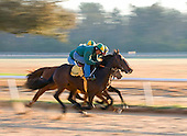 Workers at the Aiken training track.