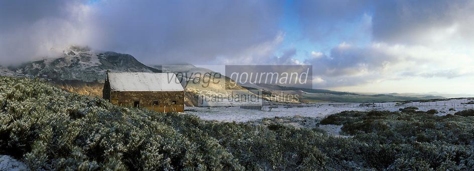 Europe/France/Auverne/63/Puy-de-Dôme/Parc Naturel Régional des Volcans/Les Monts Dore/Env. de la Croix Saint-Robert: Buron