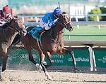 November 28, 2020: Warrior in Chief, trained by Kenneth McPeek and ridden by Robby Albarado, wins Race 4 maiden special weight, at Churchill Downs in Louisville, Kentucky on November 28 2020. Jessica Morgan/Eclipse Sportswire.