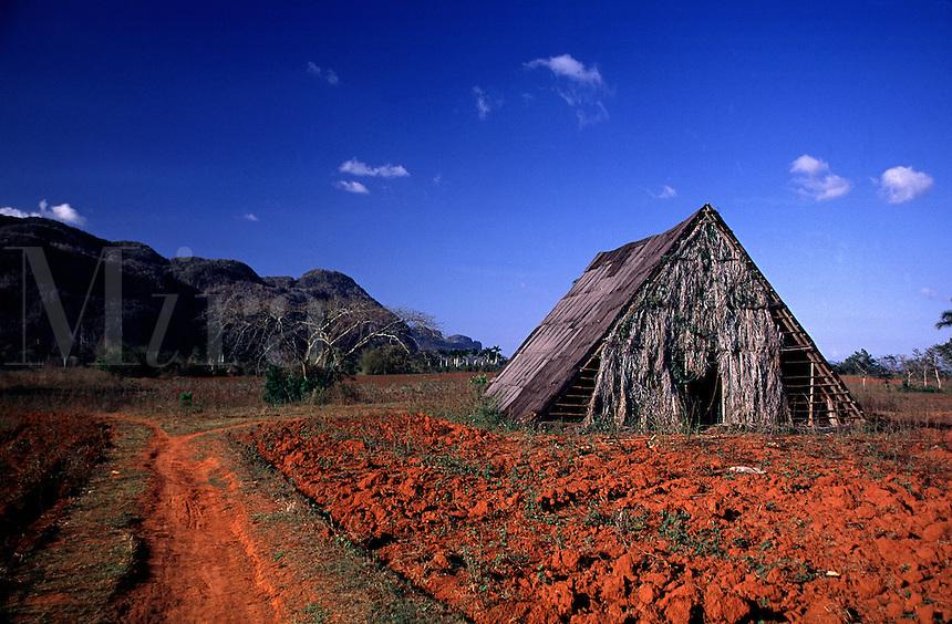 A tobacco Barn amidst red-clay agricultural fields. Tobacco Barn. Pinar del Rio Cuba Vinales Vally.