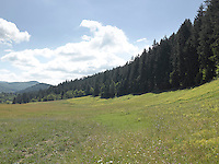 MT_LOCATION_30287