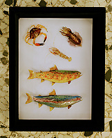 Local seafood recreated in colourful Murano glass.