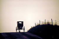 Over a hill on a country road in Ohio a buggy rides into the sunset. Amish. Ohio.