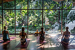 6 DECEMBER, 2019 BALI, INDONESIA:  From left to right Lea Lock (23), Chanel Gricius (23), Zoe Giliomee (24) and Christel Smook (23), loosen up for a class at The Yoga Barn in Ubud, Bali. There has been a levelling out of Australian tourist numbers to Bali in recent times and tastes are changing regarding what people want from their holiday. Millennials are being targeted by tourism authorities and they want to give them more boutique experiences than just beach and beer. Picture by Graham Crouch/The Australian