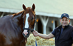 LOUISVILLE, KY -MAY 10: Kentucky Derby winner Justify held by assistant trainer Jimmy Barnes after galloping at Churchill Downs, Louisville, Kentucky. It was his first visit to the track since his Kentucky Derby win five days earlier. (Photo by Mary M. Meek/Eclipse Sportswire/Getty Images)