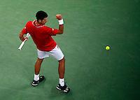 Tenis, Davis Cup 2010.Serbia Vs. Czech Republic, semifinals.Novak Djokovic Vs. Tomas Berdych.Novak Djokovic, react.Beograd, 19.09.2010..foto: Srdjan Stevanovic/Starsportphoto ©
