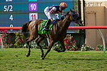 """DEL MAR, CA  AUGUST 18: #12 Fashion Business, ridden by Flavien Prat, in the stretch of the Del Mar Handicap by The Japan Racing Association (Grade ll), Breeders' Cup """"Win and You're In Turf Division"""", on August 18, 2018 at Del Mar Thoroughbred Club in Del Mar, CA.(Photo by Casey Phillips/Eclipse Sportswire/Getty Images"""