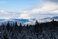 The mountains of the Purcell range stick their lovely, snow capped heads above the clouds. This mountain range in located in the Kootenai Forest of Montana