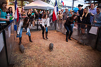 BEAR Stampede Under the Stars at Armadillo Palace