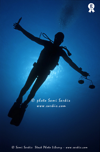 Silhouette of diver with knife and weight scale, underwater view (Licence this image exclusively with Getty: http://www.gettyimages.com/detail/sb10066226ac-001 )