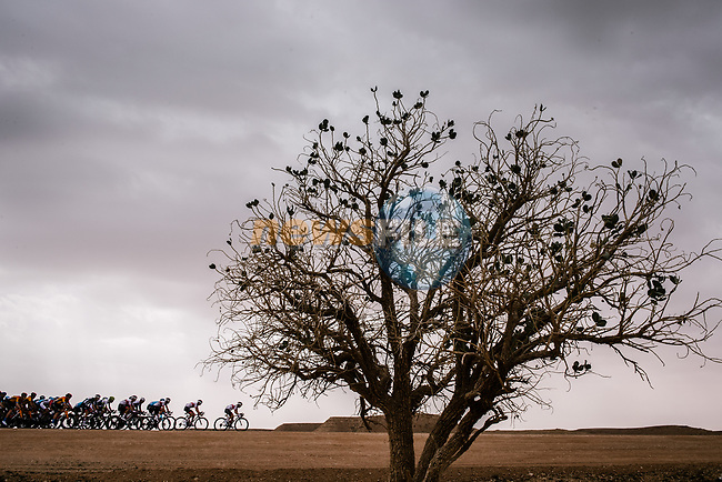 The peloton pass by during Stage 2 of the Saudi Tour 2020 running 187km from Sadus Castle to Al Bujairi, Saudi Arabia. 5th February 2020. <br /> Picture: ASO/Pauline Ballet | Cyclefile<br /> All photos usage must carry mandatory copyright credit (© Cyclefile | ASO/Pauline Ballet)