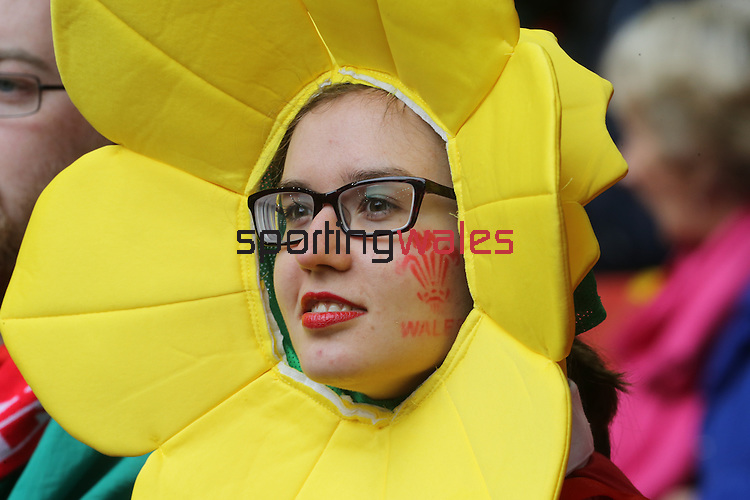A patriotic Wales rugby fan in fancy dress.<br /> RBS 6 Nations<br /> Wales v Ireland<br /> Millennium Stadium<br /> 14.03.15<br /> ©Steve Pope - SPORTINGWALES