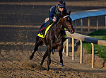 LOUISVILLE, KY - APRIL 28: My Boy Jack, trained by Keith Desormeaux, exercises in preparation for the Kentucky Derby at Churchill Downs on April 28, 2018 in Louisville, Kentucky. (Photo by Scott Serio/Eclipse Sportswire/Getty Images)