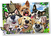 Howard, SELFIES, paintings+++++,GBHR968,#selfies#, EVERYDAY ,dogs, ,puzzle,puzzles