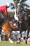 WELLINGTON, FL - JANUARY 08:  #2 Julian de Lusarreta of Coca Cola and #2 Nic Roldan of the Grand Champions Polo Club battle for the ball as #1 Grant Ganzi looks on, during the early rounds of the Joe Barry Memorial Cup, at the International Polo Club, Palm Beach on January 03, 2017 in Wellington, Florida. (Photo by Liz Lamont/Eclipse Sportswire/Getty Images)