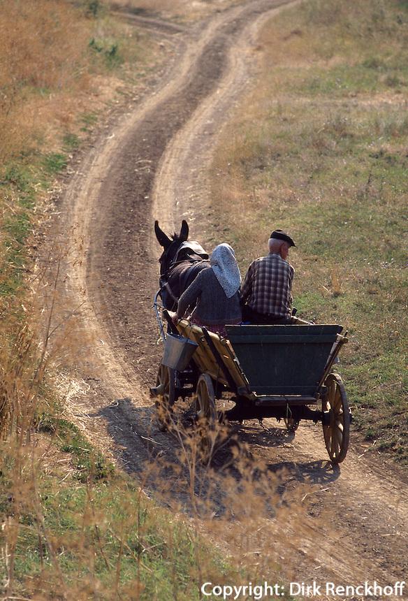Esel-Wagen in Bulgarien
