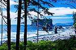Ruby Beach, at Kalaloch is one of several signed and short trails to wild and wolly beaches of Olympic National Park in the Kalaloch area.  Olympic National Park. Olympic Peninsula