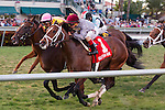 February 7, 2015: Mshawish(#1) gets a nose in front to outduel Slumber to the wire in the Gulfstream Park Turf Handicap(G1T) at  Gulfstream Park. Gulfstream Park, Hallandale Beach (FL). Arron Haggart/ESW/CSM