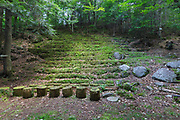 A natural amphitheater at lower Mossy Glen along Carlton Brook in Randolph, New Hampshire during the summer months. This amphitheater is along the Groveway Trail, near where the Nepalese Bridge crosses the brook.