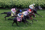 LOUISVILLE, KY - MAY 07: The field passes the grandstands for the first time during the the American Turf on May 7, 2016 in Louisville, Kentucky. (Photo by Jon Durr/Eclipse Sportswire/Getty Images)