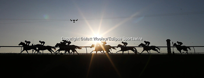 November 7, 2020 : Horses race during the Longines Turf on Breeders' Cup Championship Saturday at Keeneland Race Course in Lexington, Kentucky on November 7, 2020. Matt Wooley/Breeders' Cup/Eclipse Sportswire/CSM