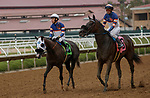 DEL MAR, CA  SEPTEMBER 3: #12 Connie Swingle, ridden by Geovanni Franco, and stablemate #8 Carmen Miranda, ridden by Flavien Prat, return to the connections after going 1-2 in the Generous Portion Stakes on September 3, 2021 at Del Mar Thoroughbred Club in Del Mar, CA.  (Photo by Casey Phillips/Eclipse Sportswire/CSM)