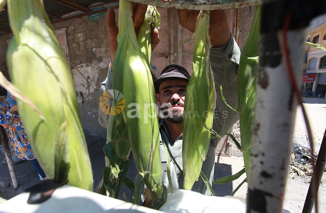 A picture taken on July 08, 2021 shows Palestinian engineer, Hamdi Lubbad, 28, sells corn on roving cart, in Gaza city. Lubbad is a computer engineering graduate where he works in this profession to help hisself . Youth (19- 29 years) are the most group suffering from unemployment. Thus, the unemployment rate among youth reached about 39%; 24% in the West Bank and 67% in Gaza Strip. Moreover, the youth graduates of those who hold a scientific qualification of an intermediate diploma or higher are the most group suffering from unemployment, as this rate reached about 54%; (36% in the West Bank and 79% in Gaza Strip). Photo by Omar Ashtawy