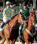 LEXINGTON, KY - OCTOBER 29: #2 Noble Bird and jockey Julien Leparoux win the 59th running of the Hagyard Fayette Grade 2 $200,000 at Keeneland race course for owner John Oxley and trainer Mark Casse.  October 29, 2016, Lexington, Kentucky. (Photo by Candice Chavez/Eclipse Sportswire/Getty Images)