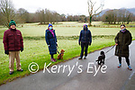 Michael Guy, Susan and Nessa Brunner, Sheena Doyle, Maria Murphy and Lola the dog enjoying a stroll in the town park in Killarney on Saturday.