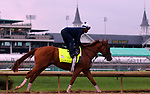 LOUISVILLE, KY -APR 25: Kentucky Derby hopeful Good Magic works out for the Kentucky Derby at Churchill Downs, Louisville, Kentucky. (Photo by Mary M. Meek/Eclipse Sportswire/Getty Images)